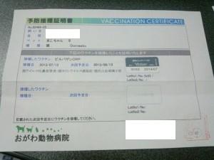 IMG_20130713_195048.jpg